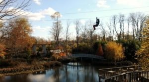 Take A Canopy Tour At Screaming Raptor Near Cincinnati To See The Fall Colors Like Never Before