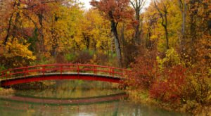 9 Parks In Michigan That Come To Life With Vibrant Colors In The Fall