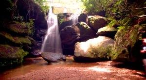 9 Hidden Outdoor Attractions Locals Keep To Themselves In Alabama