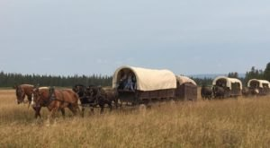 Take This Epic Wyoming Wagon Train For The Adventure Of A Lifetime