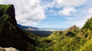 This Easy Forest Hike In Hawaii Will Lead You To The Most Rewarding View
