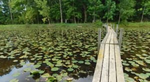 10 Of The Greatest Hiking Trails On Earth Are Right Here In Ohio