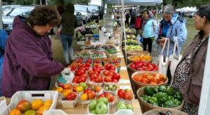 This Buffalo Farmers Market Is The Best Spot For A Fun Fall Day