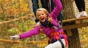 Take A Canopy Tour At The Adventure Park at Storrs In Connecticut To See The Fall Colors Like Never Before