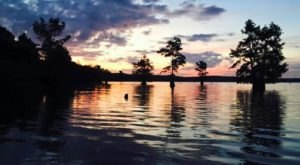 7 Short And Sweet Fall Hikes In Louisiana With A Spectacular End View