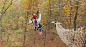 Take A Canopy Tour At Virginia Canopy Tours To See The Fall Colors Like Never Before