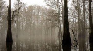 7 Horribly Creepy Things You Didn't Know You Could Do In Louisiana