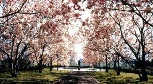 Shhh… These 8 Hidden Places Are Delaware's Best Kept Secrets