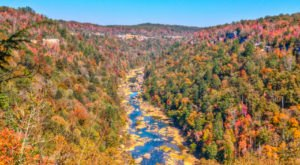 11 Of The Greatest Hiking Trails On Earth Are Right Here In Tennessee