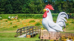 Kids Will Go Nuts For This Wicked Awesome Pumpkin Patch In Louisiana