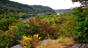 The Incredible Hike That Will Show You DC's Fall Colors Like Never Before