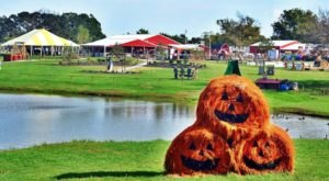 These 11 Charming Pumpkin Patches In Kansas City Are Picture Perfect For A Fall Day