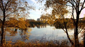 10 Picture Perfect Fall Day Trips To Take Around Detroit