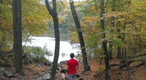 7 Short And Sweet Fall Hikes In Rhode Island With A Spectacular End View