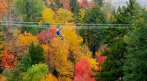 Take A Canopy Tour At Bretton Woods In New Hampshire To See The Fall Colors Like Never Before