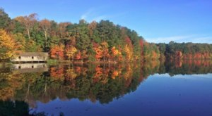 The One Hikeable Lake In Alabama That's Simply Breathtaking In The Fall