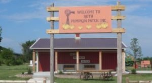 The Pumpkin Patch Train Ride In Illinois That's Perfect For A Fall Day