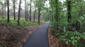 A New Trail Is Opening In This Ancient Forest In Oklahoma And You'll Want To Visit