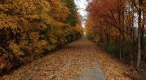 This Indiana Greenway is the Perfect Place to Explore in the Fall