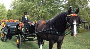The Classic Indiana Fall Celebration You Won't Want To Miss