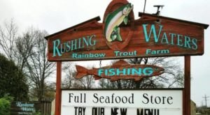 A Remote Restaurant In Wisconsin, Rushing Waters Fisheries Serves Some Of The Most Delicious Seafood Around