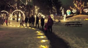 Take An Enchanting Winter Walk Through Woodland Lights In Ohio