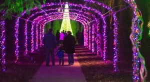 The Mesmerizing Christmas Display In Tennessee With Over 1 Million Glittering Lights