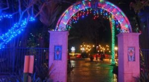 Take An Enchanting Winter Walk Through Holiday Lights In The Gardens In Florida