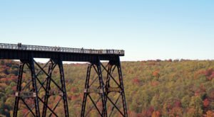 This Epic Skywalk Is Totally Worthy Of A Road Trip From Buffalo