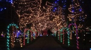 14 Magical Light Displays In Ohio That Will Simply Mesmerize You This Season