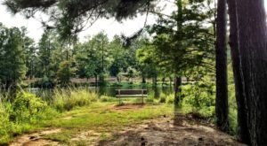 These 7 Secluded Parks In Louisiana Are A Nature Lover's Paradise