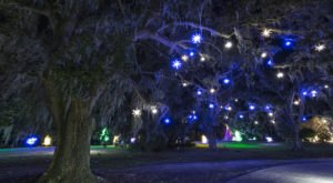 Take An Enchanting Winter Walk Through Airlie Gardens In North Carolina