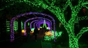 10 Events And Festivals Around Nashville That Will Make The Season Magical