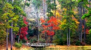 10 Unimaginably Beautiful Places In Mississippi That You Must See Before You Die