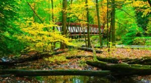 The Tranquil Nature Preserve Near Pittsburgh That's Perfect For A Day Trip