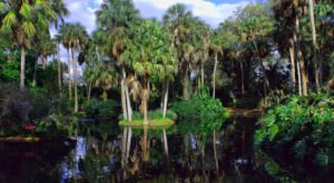 This Hidden Spot In Florida Is Unbelievably Beautiful And You'll Want To Find It