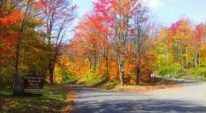 One Of The Highest Roads In West Virginia Will Lead You On An Unforgettable Journey