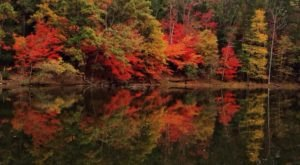 The One Hikeable Lake Near Charlotte That's Simply Breathtaking In The Fall