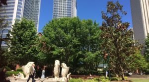 11 Ways To Have The Most Charlotte Day Ever