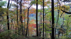 8 Of The Greatest Hiking Trails On Earth Are Right Here In Indiana