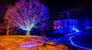 The Magical Maryland Garden That Comes Alive With Light Each Winter