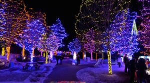 The Garden Walk That Lights Up In A Magical Way Every Winter