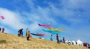 This Incredible Kite Festival In Northern California Is A Must-See
