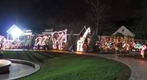 Take An Enchanting Winter Walk Through Turtle Back Zoo's Holiday Lights In New Jersey