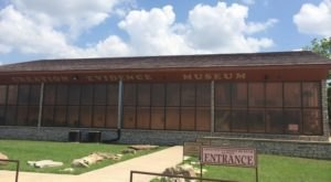 This Roadside Attraction Near Dallas – Fort Worth Is The Most Unique Thing You've Ever Seen