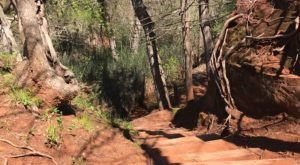 The Absurdly Beautiful Hike In Oklahoma That Will Make You Feel At One With Nature