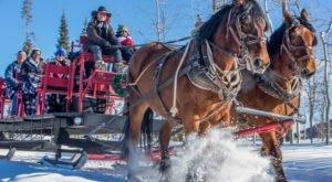 These 6 Horse-Drawn Sleigh Rides Around Denver Make For A Perfect Winter Adventure