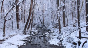 9 Picturesque Trails Around Philadelphia That Are Perfect For Winter Hiking