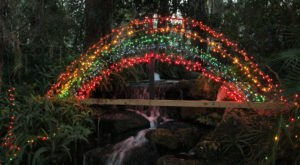 You Must Visit These 10 Awesome Places In Florida This Winter