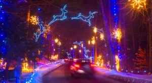 A Mesmerizing Christmas Display Massachusetts, Bright Nights At Forest Park Has Over 675,000 Glittering Lights
